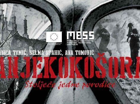 MESS2014_SJP_EU_HD